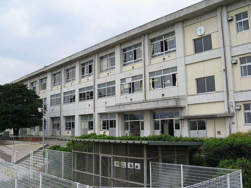 大林小学校(周辺)